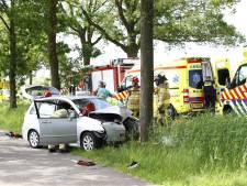 Auto botst tegen boom in Zwolle, inzittenden en hond raken gewond
