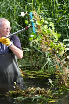 Rivierkreeft, graskarper en duizendknoop: Delfland opent jacht op ongewenste indringers