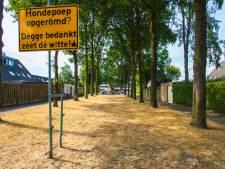 Nieuwe lente Tilburgse wijken begint in speeltuintje B-Buurt