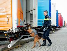 Verstekelingen aangetroffen in vrachtwagen op A2 na meerdere meldingen