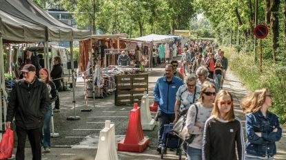 """Zaterdagmarkt aan Kasteelgracht valt in de smaak: """"Maar we missen de sfeer van de Grote Markt wel"""""""