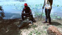 In dit Afrikaans dorp zijn mens en krokodil beste vrienden