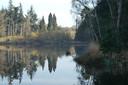 Venrode bij Boxtel is een ven dat buiten de Natura-2000 gebieden valt. Zulke vennen kunnen in aanmerking komen voor subsidie van de provincie.