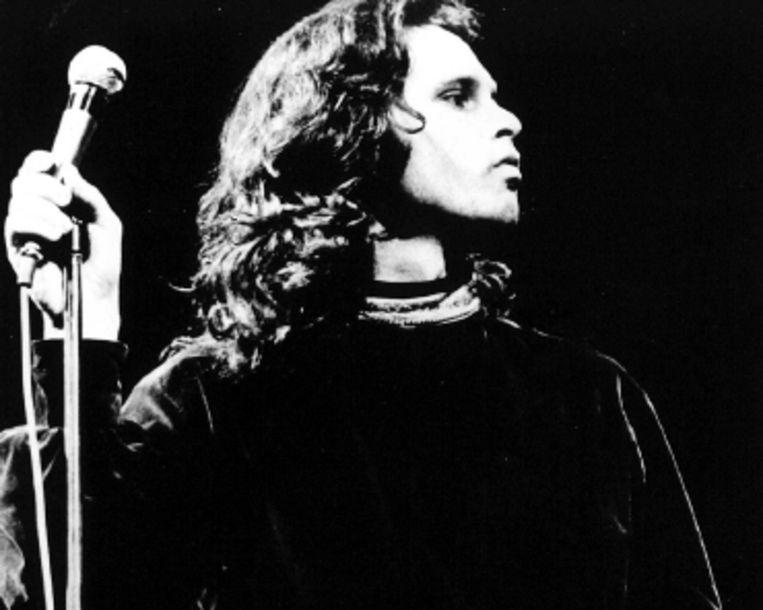 Minder zonnige bands uit LA, zoals The Doors, ontbreken op Blokhuis? verzamelaar. (FOTO ANP) Beeld