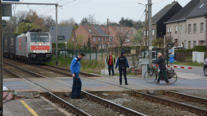 Treinverkeer even onderbroken door auto op de sporen