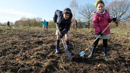 500 inwoners planten speelbos in Hoogstraat