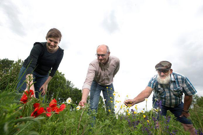 Groessenaar Erik Willems wil op eigen initiatief de gemeente Duiven weer laten bloeien. Hij is die kaalgemaaide bermen beu. Willems (midden) met Karin Conen en Jan Boerboom (pet).