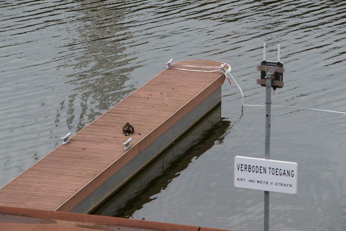 Rood-wit lint en borden die aangegeven dat het verboden is om aan te meren in plaats van zeiljachten en motorboten. Het grootste deel van de Noorderhaven is het hele vaarseizoen afgesloten voor plezierboten.