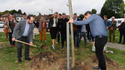 Gemeenten ondertekenen Bomencharter: 'Doel is om 75.000 nieuwe bomen te planten tegen 2024'