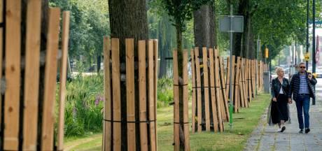 Pleit in Waalwijkse bomensoap lijkt beslecht