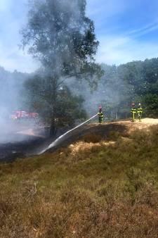 Brand op de hei bij 't Appeltje in Bergen op Zoom inmiddels 'redelijk onder controle'