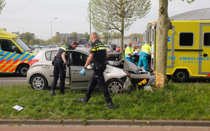 Een automobilist is vanmorgen op een boom gebotst op de Overkampweg in Dordrecht.