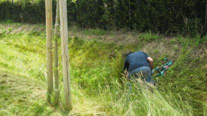 Dolmans Landscaping Group eerste Limburgs bedrijf met een maatwerkafdeling