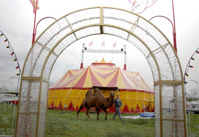 Circus Barones uit België.