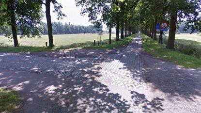 Klaverbladdreef krijgt nieuwe asfaltlaag