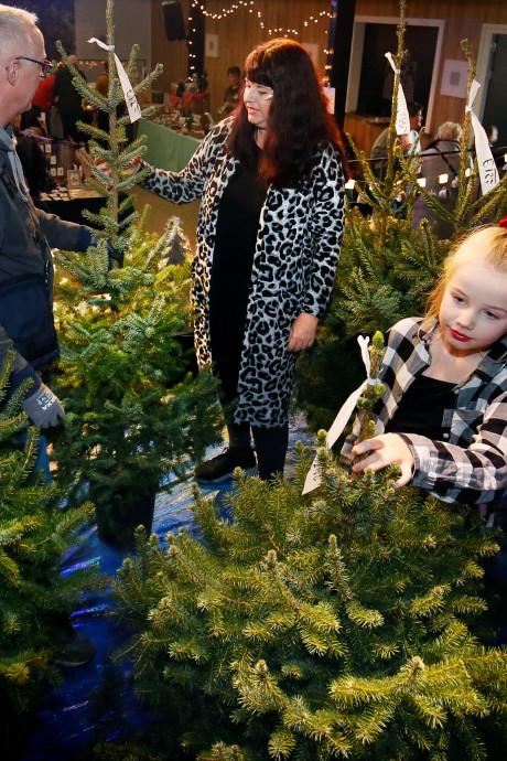 Sinterklaas is het land uit, tijd voor de kerstboom