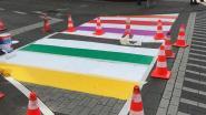 IN BEELD. Zebrapaden, vlaggen en zelfs een politiecombi: Antwerpen kleurt regenboog voor Pride