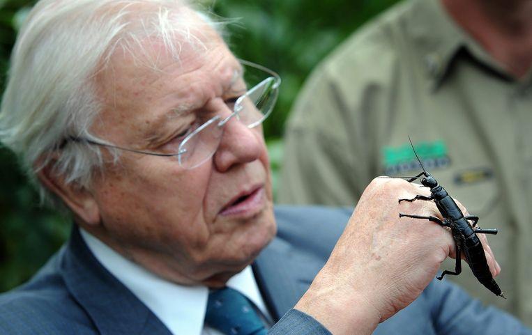 Sir David Attenborough. Beeld anp