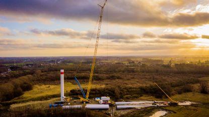 Windmolenpark levert stroom aan 6.500 Gentse gezinnen