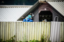Een nertsenfokkerij in Deurne wordt geruimd.