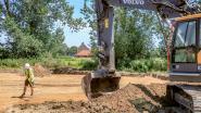 """Archeologische site toont geheimen: """"Hoeve uit 13de eeuw zo ver buiten stadsgebied? Dat is uniek"""""""