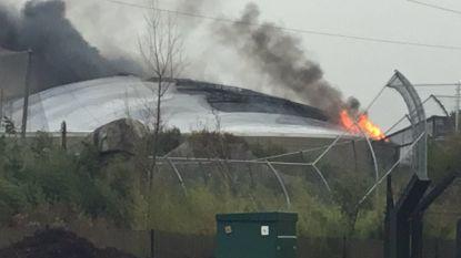 Grote brand in beroemde 'Chester Zoo', massale evacuatie van mensen en dieren