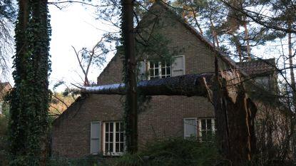 236 miljoen euro schade door stormen dit jaar