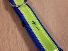 Wijkagenten delen halsbanden uit in Neder-Betuwe: 'Welke hond wil daar niet mee gezien worden?'