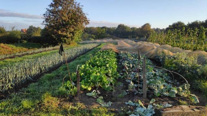 Meer inbreng voor leden van zelfoogsttuin aan Stadsboerderij