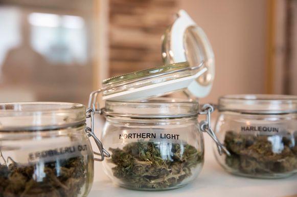 De gedroogde cannabis maakt je niet high, maar heeft wel een ontspannend effect.
