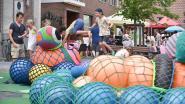 Cultuurkaravaan is deze zomer wandelroute: QR-codes verzamelen, foto's zoeken en genieten van minivoorstellingen