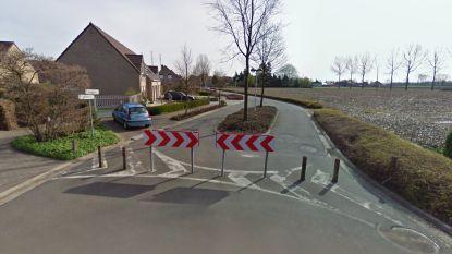Paaltjes blijven voorlopig in wijk Bunderhof