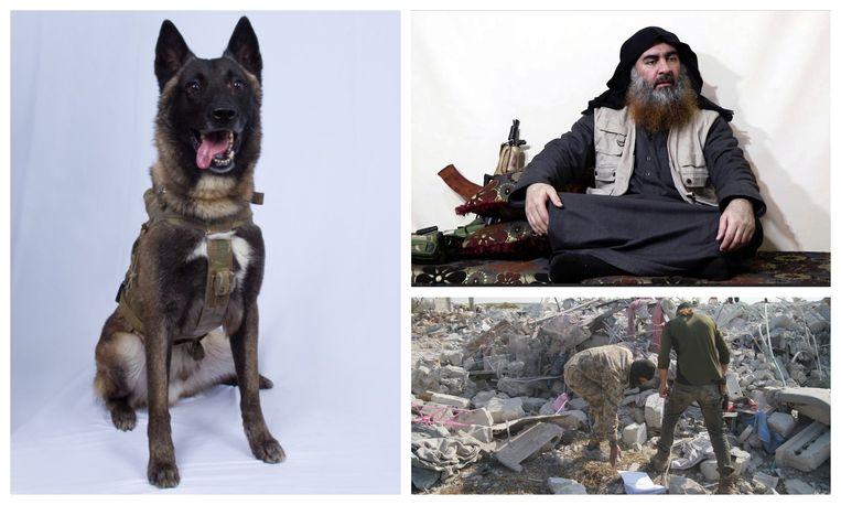 Abu Bakr al-Baghdadi bracht zichzelf met een explosief vest om het leven bij een operatie van de Amerikaanse Special Forces in Syrië. De K9-hond in beeld speelde een grote rol bij de actie.
