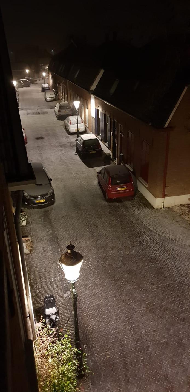 De eerste nachtelijke vlokjes in Tolkamer