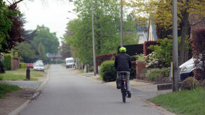 Proefproject in Bosstraat: knip moet doorgaand verkeer weren