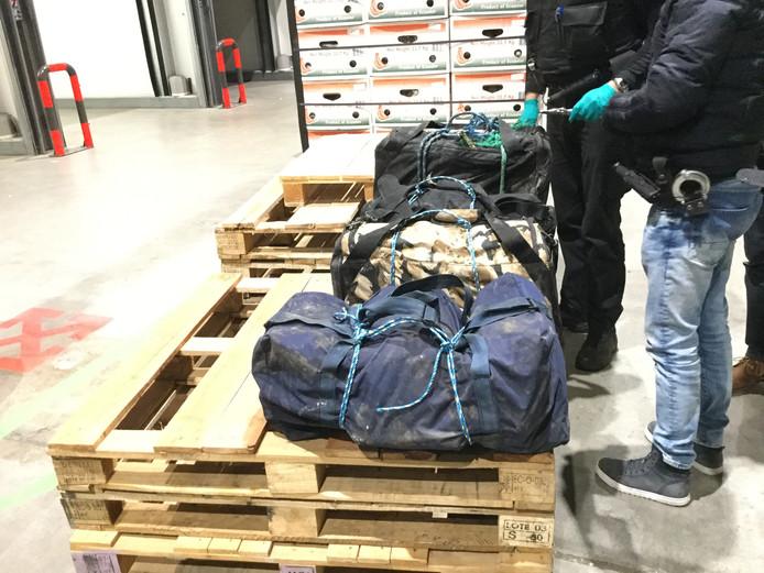 Tussen een container vol bakbananen heeft de Douane op 12 maart in IJsselmuiden een partij van 124 kilo cocaïne aangetroffen.