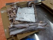 Voor Utrechter dreigt jarenlang cel na smokkel van ruim duizend kilo cocaïne