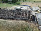 Boer Krüs baalt van laat transport van kadavers na stalbrand in Didam