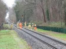 Boom op het spoor in Glanerbrug