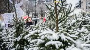 Kerstbomen worden aan huis opgehaald
