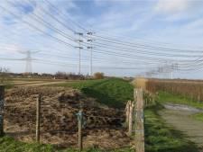 Extra zitting Raad van State over ondergrondse stroomkabels bij Krabbendijke
