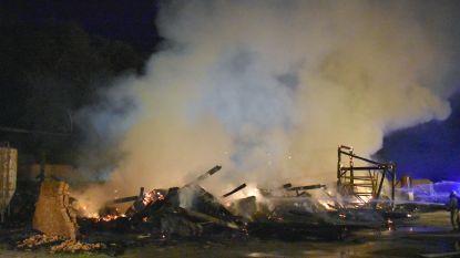VIDEO: Schuur brandt volledig uit aan Pannenhoef