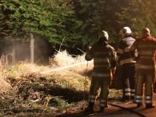 Wéér hooibrandje in Máximapark