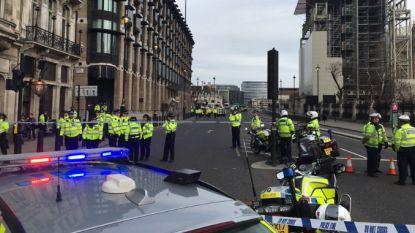 Verdacht voertuig bij Londens parlement zet politie even op scherp, maar loos alarm
