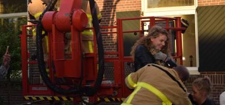 Consternatie in wijk: brandweer haalt met hoogwerker kat uit boom in Doetinchem