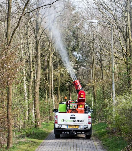 Vught wil 'wormpjes' de bomen inblazen tegen irritante 'jeukrups'