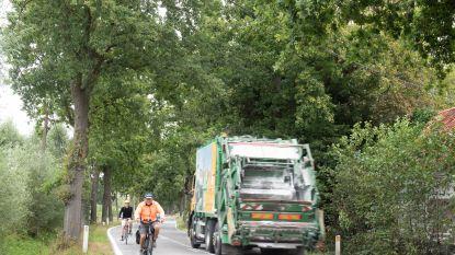 """Natuurpunt ijvert voor behoud van bomen langs Nazarethsesteenweg in Kruisem, """"Onrealistisch"""", reageert schepen"""