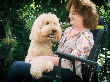 Anita Korff  en haar labradoodle Butler in de prijzen