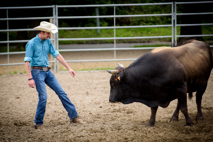 Helmonds lieshoutse cowboy traint in belgische manege voor for Engelse tuin 1 waalre