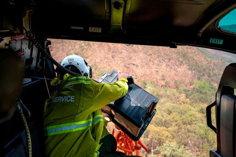 NSW National Parks and Wildlife services gooien wortels en zoete aardappelen uit een helikopter om het wildlife eten te geven na de verwoestende bosbranden.